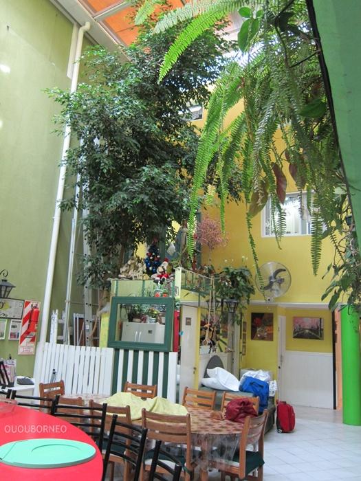 Tree in courtyard